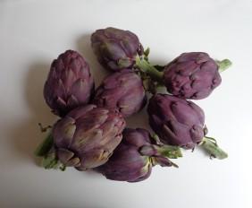 artichauts-poivrade